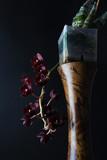 burgundy red orchid on dark black background Fredklarkeara After Dark