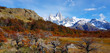 Laguna Capri and Mount Fitz Roy, Argentina. View in the morning of the Patagonian autumn colors.  - 250008757