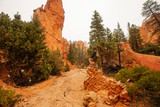 Hiker visits Bryce canyon National park in Utah, USA - 250012996