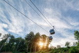 Mountain cableway. Sunny summer day. - 250014143