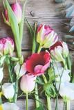 Fototapeta Tulipany - Frühlingsblumen - Blumenstrauß bunt mit Tulpen - Muttertag , Ostern... © S.H.exclusiv