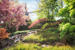 Spring landscape. Nature in blossom