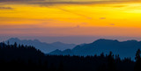 orange mountain silhouette background,trees and mountain peaks in golden hour sunset