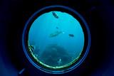 Underwater fish in coral reefs