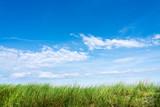 Grüne Wiese mit blauem Himmel und Wolken als Hintergrund