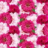 Beautiful floral background of tsiniya and peonies  - 250065370