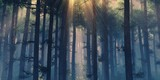 Fototapeta Las - Forest in the fog, haze in the forest, smoking forest, trees in the morning in the fog, panorama of the smoking forest © ustas