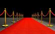 red carpet 3d - 250077977