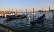 Quadro Gondolas in Venice, Italy