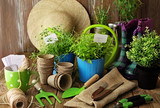 planting tools on wooden background