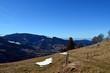 Quadro Winterfrühling im Schwarzwald