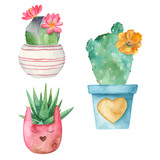 Watercolor cacti and succulents in flower pots. Illustration on white background. Great for cards, invitations, weddings, blogs and more.