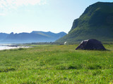 Seascape with tent on beach, Lofoten Norway - 250202383