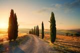 włochy toskania krajobraz wzgórza; letnie pola uprawne i wiejska droga;