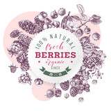 Backgrond with round emblem, type design and berries - 250241312