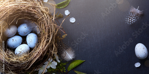 decorated Easter eggs in nest and spring flower on table background - 250281599