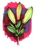 garden lily buttons