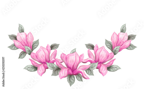 obraz lub plakat Hand drawn painting watercolor pencils and paints pink magnolia flowers isolated on white background