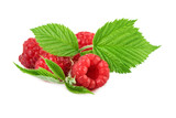 organic raspberry with green leaf on white close up