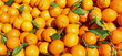 Quadro background of many ripe oranges with leaves