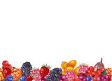 Seamless border with hand drawn berries - 250406702
