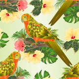 Seamless texture bird Sun Conure Parrot , home pet , parakeet  on a branch bouquet with tropical flowers hibiscus, palm,philodendron on a white background vintage vector illustration editable