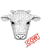 illustration of hand-drawn pen and ink black on white background character a cow rabbit head. - Vector