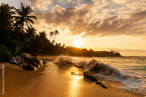 Leinwandbild Motiv Beautiful sunset on the beach with palms on a Caribbean island