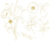 Golden sketch anemone and tulip big set. Hand painted flowers, eucalyptus leaves, berries and branch isolated on white background for design, print or fabric. - 250508334