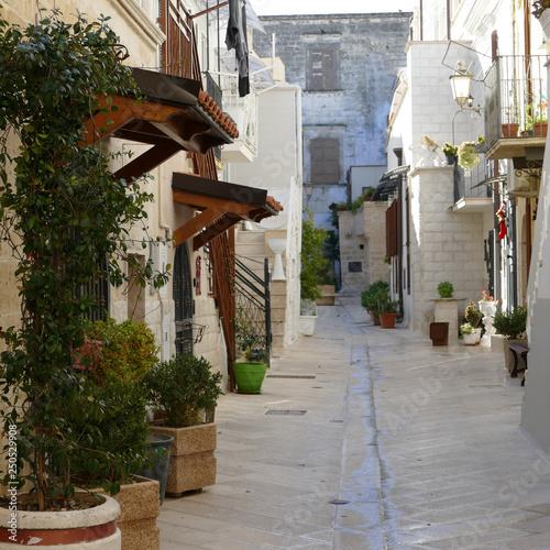 Adelfia. Sud Italia. Particolari architettonici del centro storico  © Franxuc