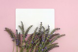 lavender flower bouquet and white rectangular  plate on a pink background.top view, copy space.