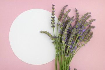 lavender flower bouquet and white round plate on a pink background.top view, copy space.