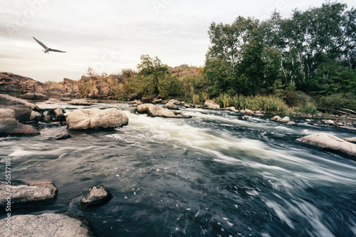 Roll on mountain river flowing among the stones © alexlukin