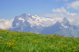 Alpine peaks landskape background. Jungfrau, Bernese highland. Alps, tourism, journey, hiking.