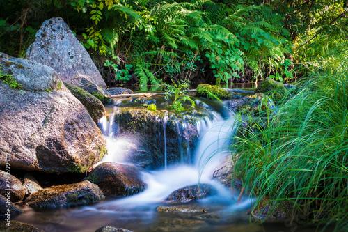 Saltos de agua o cascadas en un río de montaña con vegetación - 250599532
