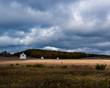 Quadro The D.H. Day Farm, part of the Sleeping Bear Dunes National Lakeshore, Michigan, USA.