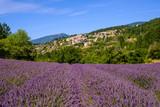 Vue sur le village Aurel en Provence, France. Champ de lavande au premier plan.
