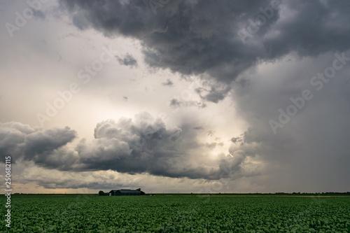 Leinwanddruck Bild Farm under a dramatic thundery sky over the dutch countryside between Gouda and Leiden, Holland.