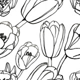 Tulip drawing floral seamless pattern.