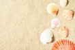 Leinwanddruck Bild - Sea shells on sandy beach. Summer background. Top view