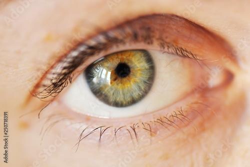 close up of female eye - 250718391