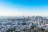 panoramic city skyline aerial view in Tokyo, Japan