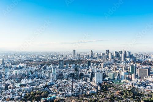 mata magnetyczna panoramic city skyline aerial view in Tokyo, Japan