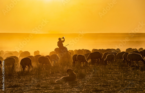 mata magnetyczna Cowboy dander, smoke and dust was in the wild horses, sunset