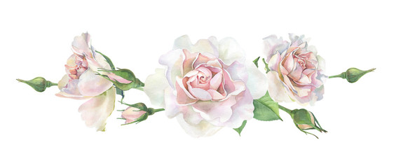 Three pink watercolor roses on a white background. For greetings and invitations, weddings, birthdays and mother's day © Olga M
