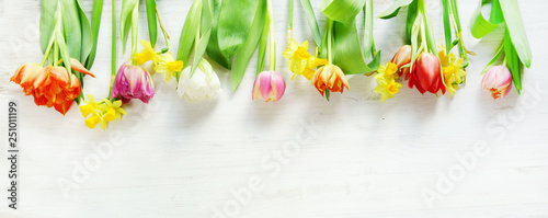 Ostern, Frühling, Tulpen, Narzissen, Osterglocken, Banner, Header, Headline, Textraum, copy space,