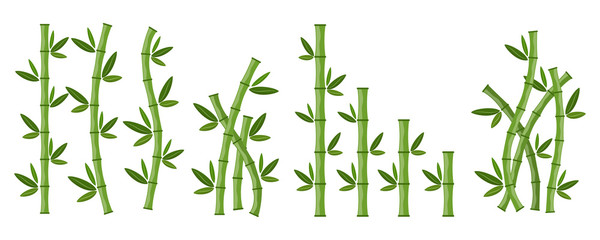 Green bamboo branches and leaves. Vector illustration. © chekman