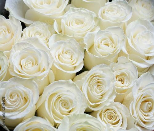 Fresh white roses bouquet flower background