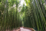 Fototapeta Bambus - Simnidaebat bamboo forest path © aaron90311