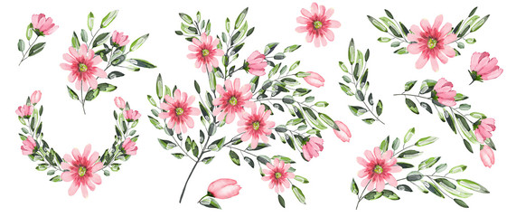 Watercolor drawing of a branch with leaves and flowers. Botanical illustration. Composition of pink flowers and colorful leaves. Set of bouquets, twigs, flower elements isolated on white background. © Erenai
